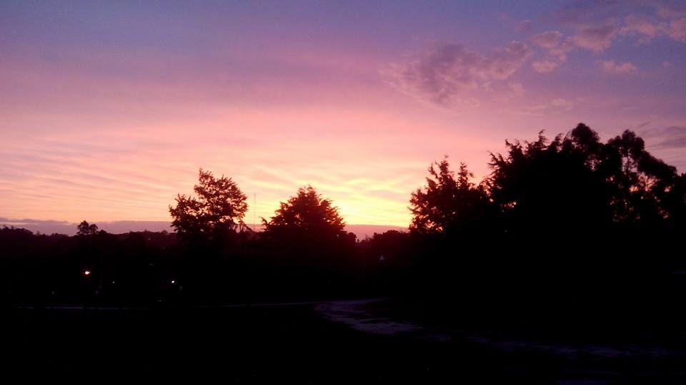 El cielo se torma rosa..