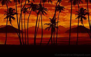 Scarface wall mural Fond d'écran palmier, Palmiers