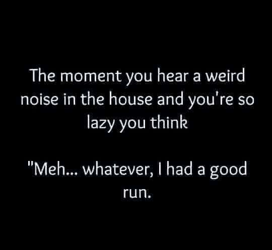 Pin By Alexis Todd On Funny Shit Funny Quotes Funny Laughing So Hard