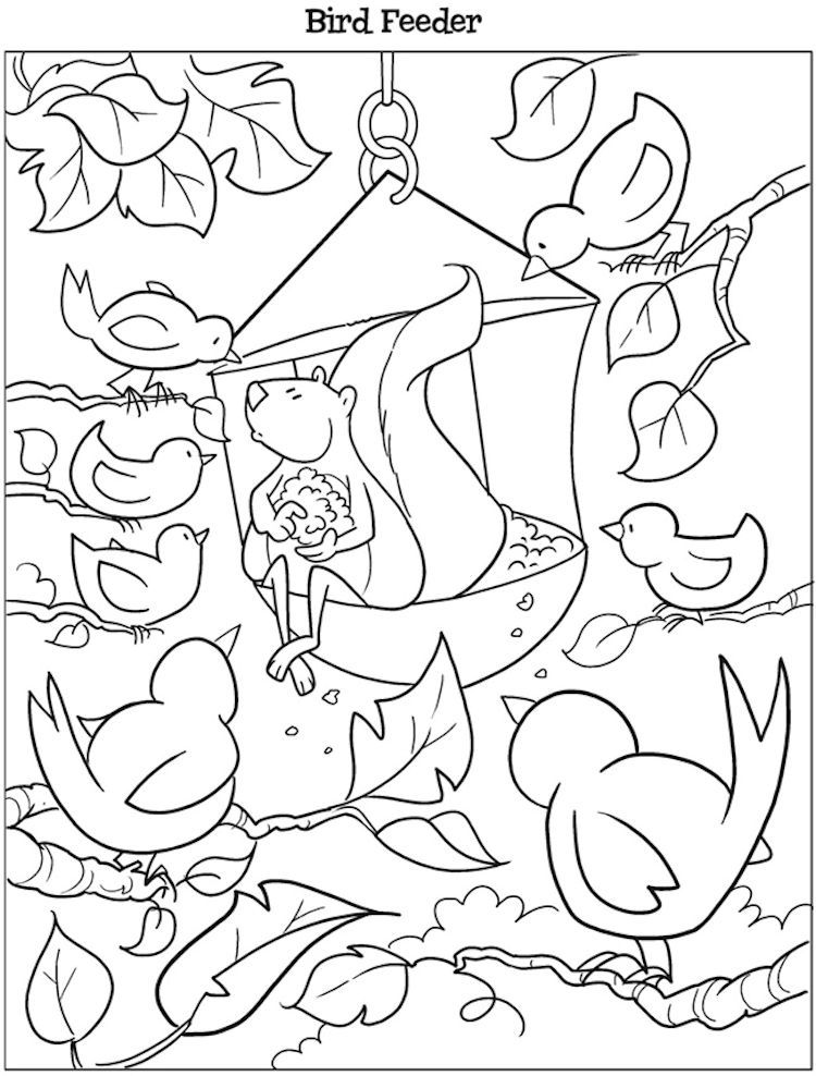 Dover Kooky Birds Coloring Page Bird Feeder