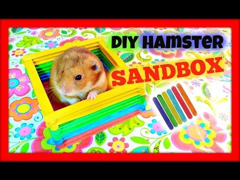 DIY Hamster Toy Popsicle Sticks YouTube (With images