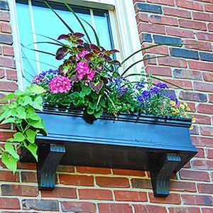Black Window Box With Sweet Potato Vine And Coleus Center Piece Black Window Box Window Box Window Planter Boxes