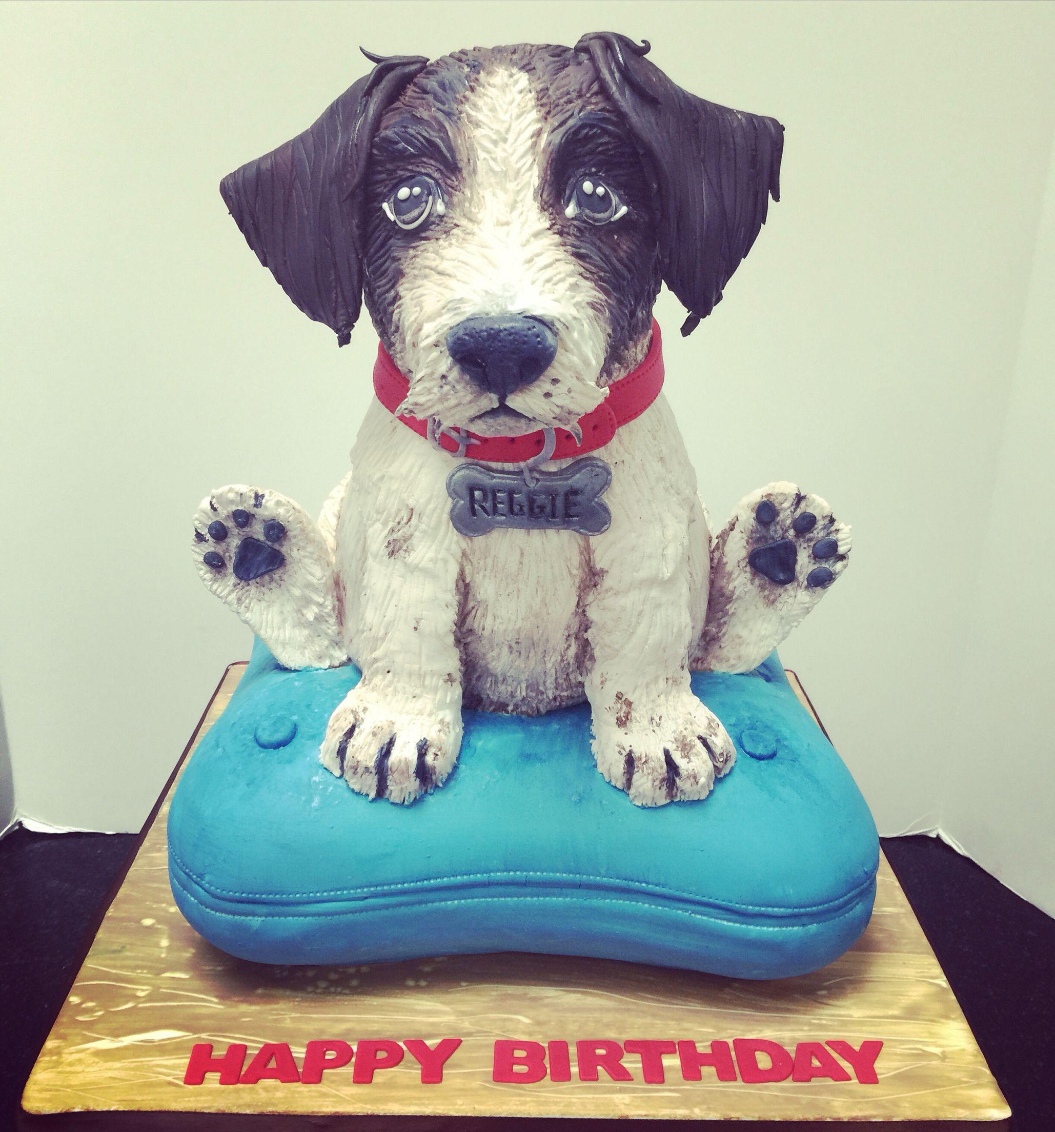 Jack Russell birthday cake Animal cakes, Dog cake, Dog cakes