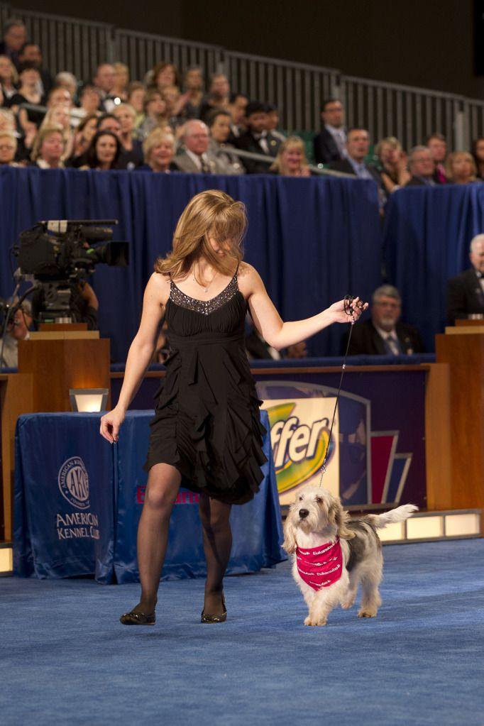 2011 AKC Eukanuba National Championship Dog Show, VP of Canine Communications, Eukanuba, Pawl Griffin