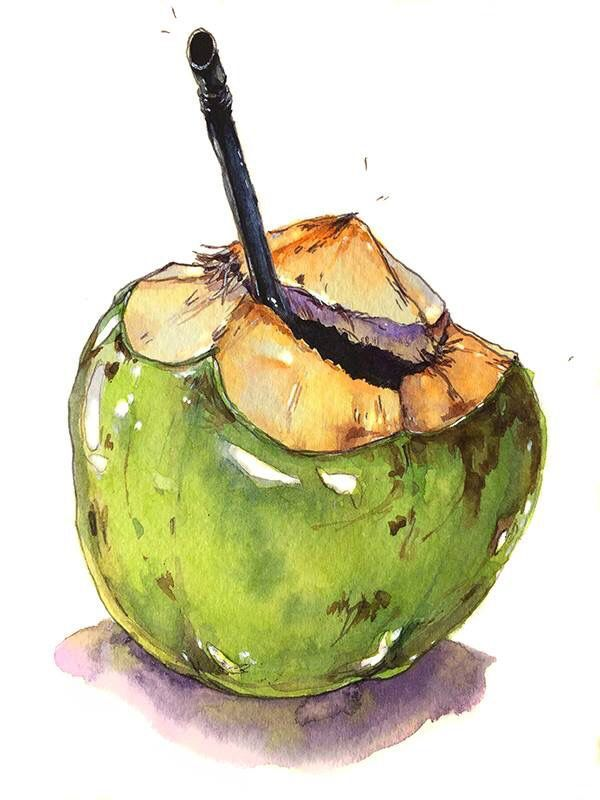Pin By Indrawati On Coconut In 2020 Food Painting Fruit