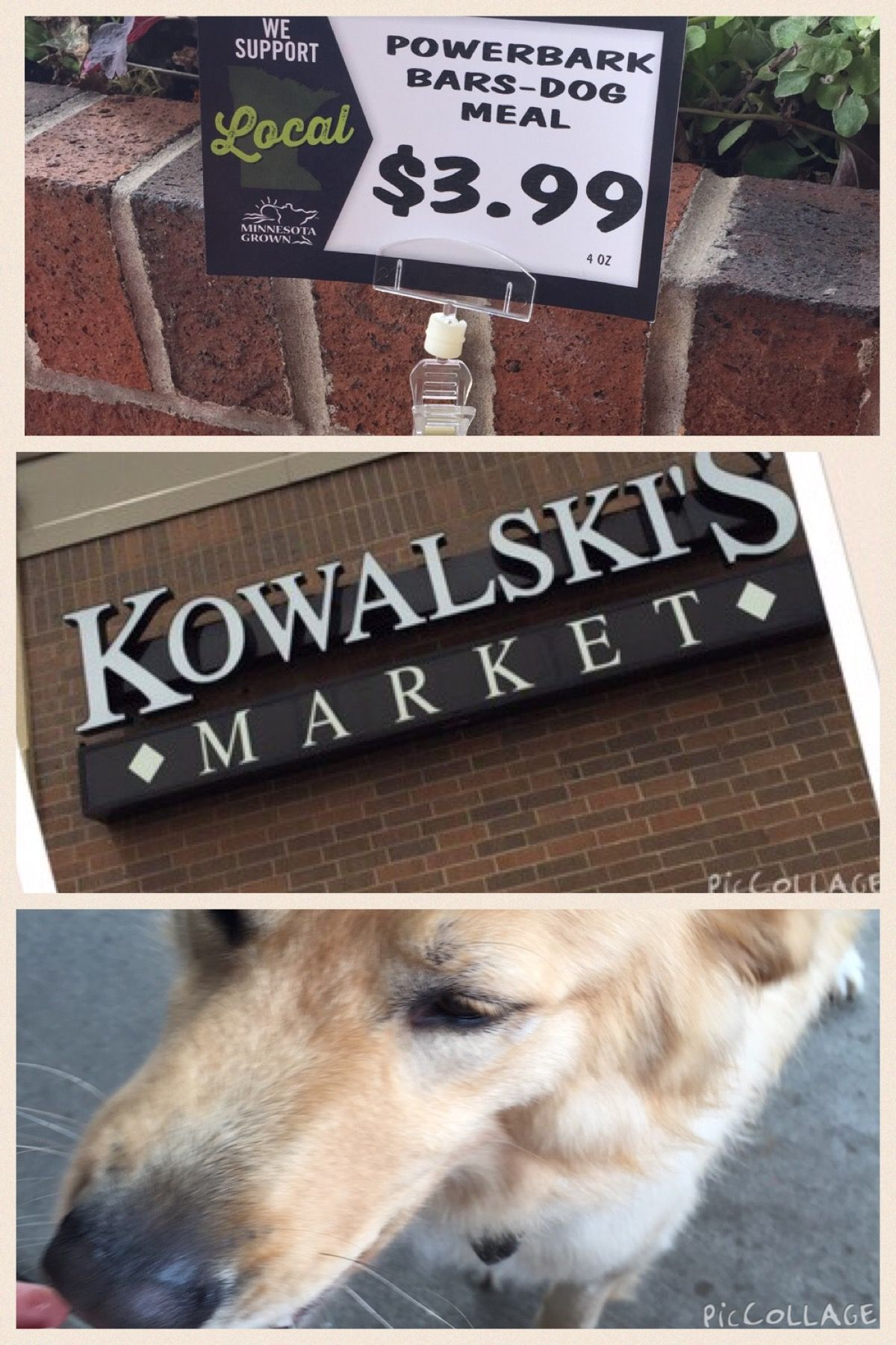 Shop local event at Kowalski's