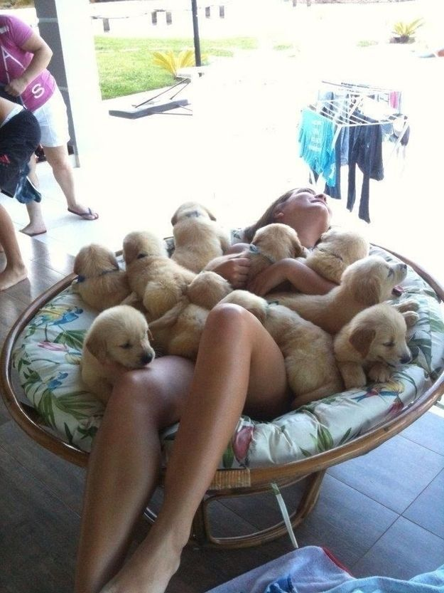 The luckiest girl in the world taking a bath in puppies.