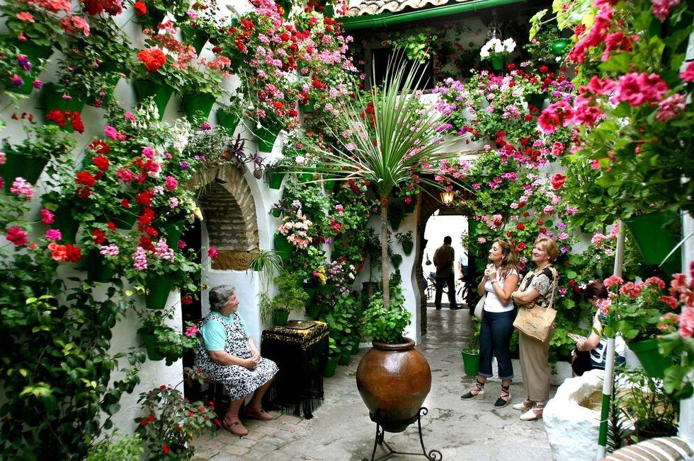 El Festival De Los Patios Cordobeses Andalucia Spain