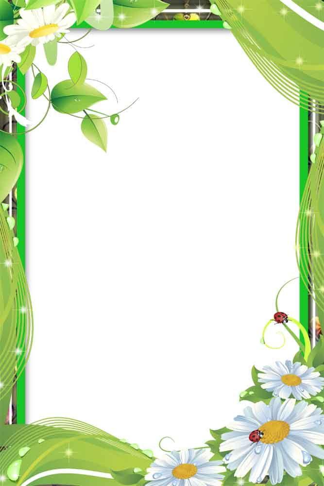 Flower Frame 283 291 Jpg 667 1000 Flower Frame Frame Border Design Colorful Borders Design