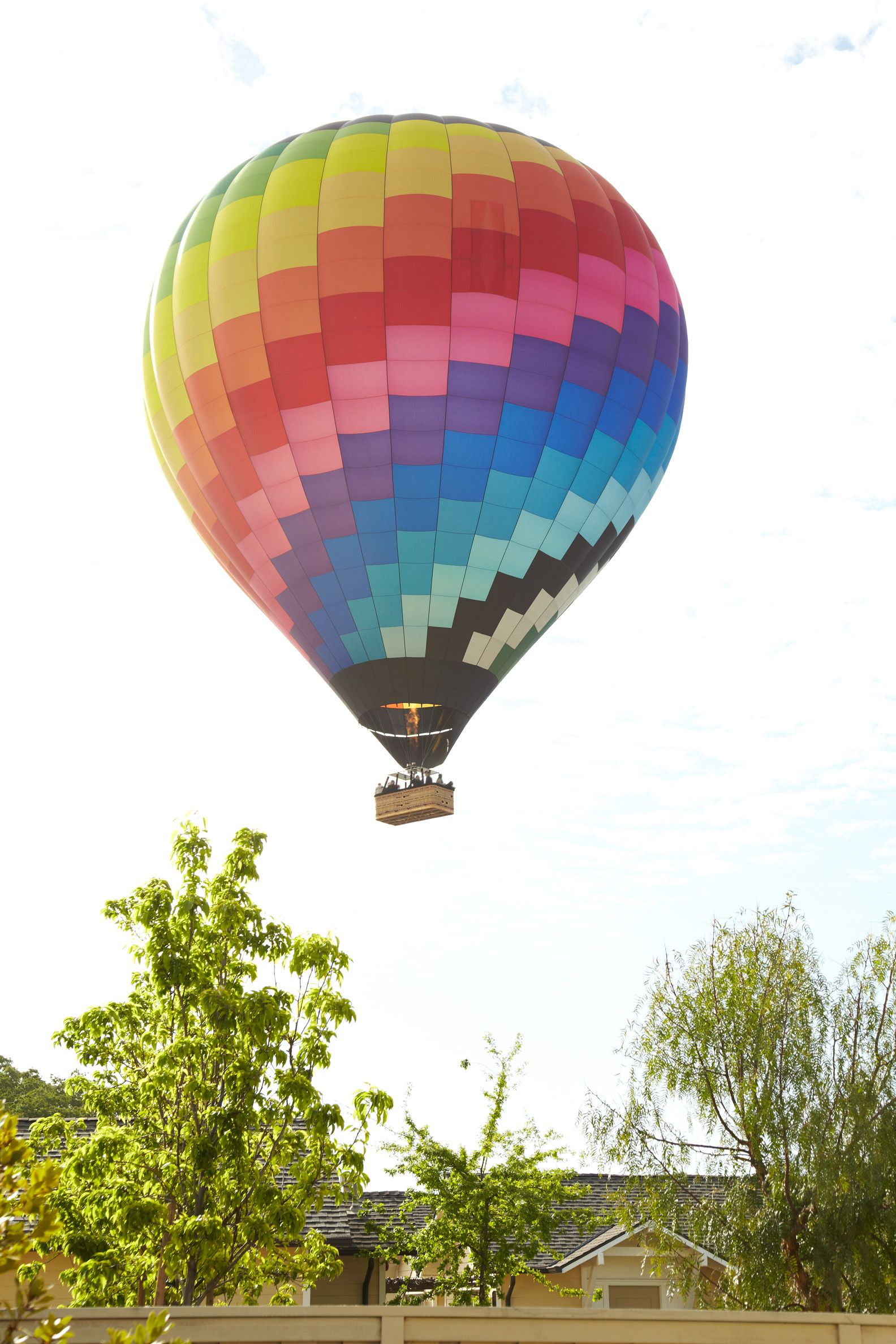 Take a hot air balloon ride above the beautiful vineyards