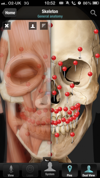 Virtual Body Human Anatomy - 2D anatomy app | College life ...