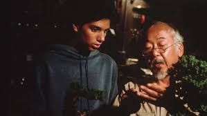 Image result for The Karate Kid Part 3 Pinterest