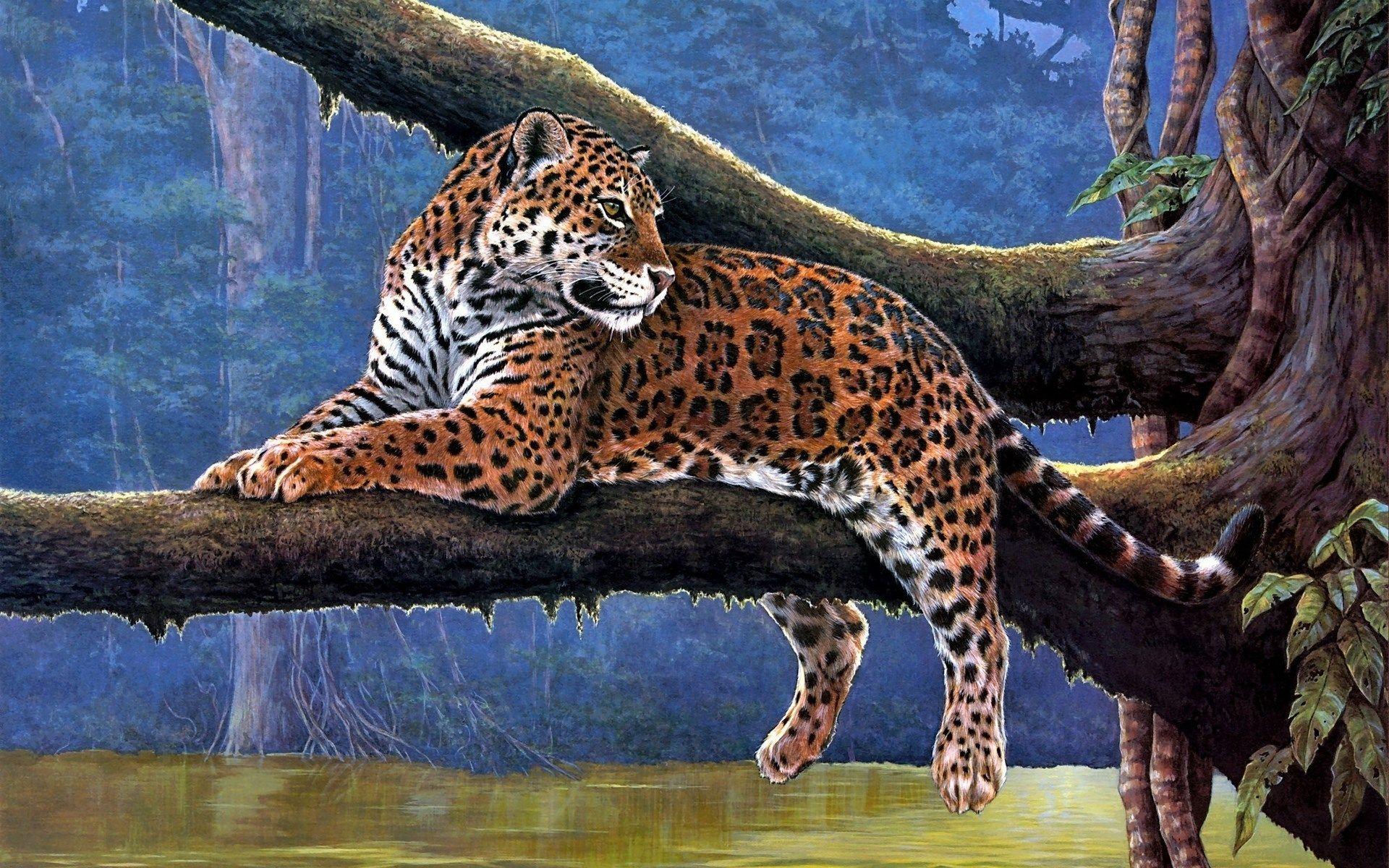 использовались большие животные картинки рисунки для
