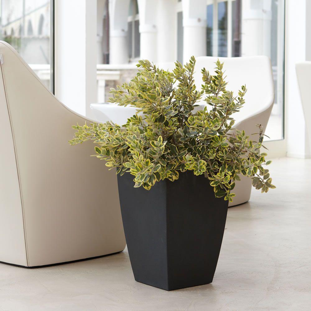 Vasi per interni moderni vasi da giardino fioriere vasi for Vasi arredamento moderno