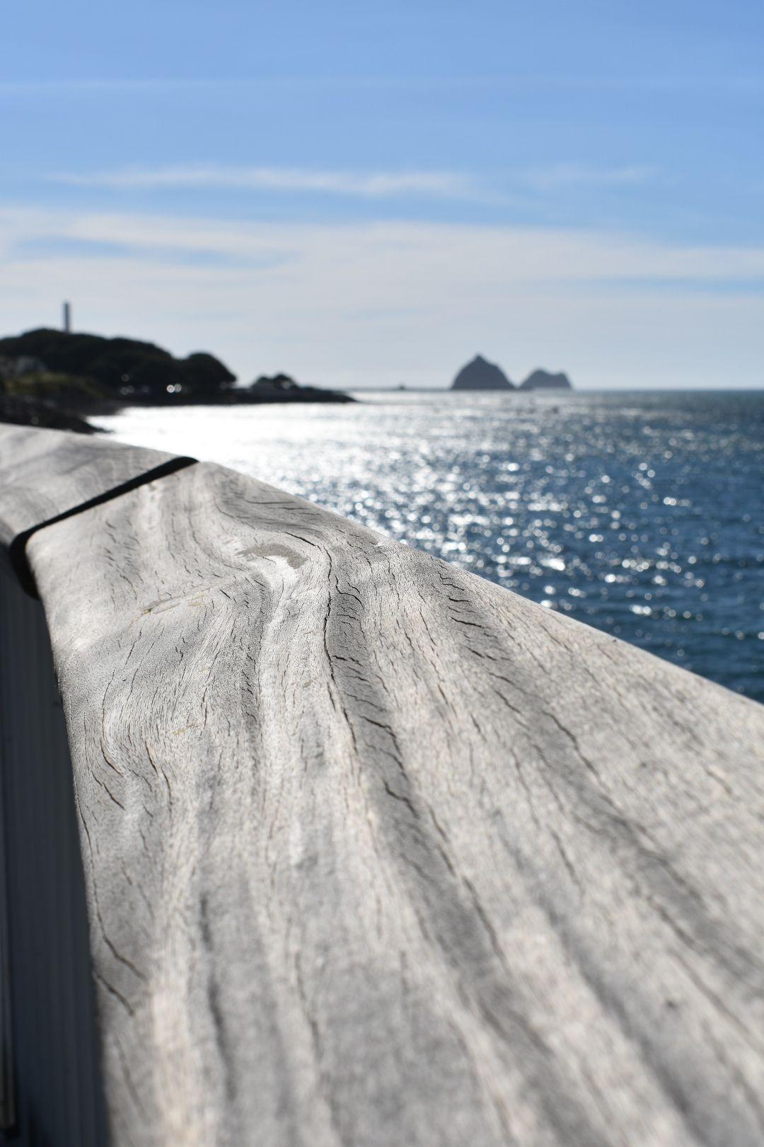 New Plymouth - coastal walkway | Travel pics | Pinterest | Travel ...