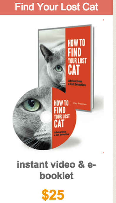How To Find A Lost Cat Cat Finder Lost Cat Pet Detective