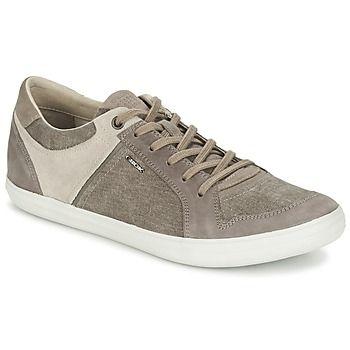 Ardilla ven inoxidable  Geox - BOX D | Zapatos de vestir masculinos, Zapatos hombre, Zapatos de  vestir