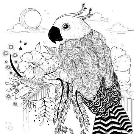 Hermoso loro — Vector de stock   hhhh   Pinterest   Loros, Pájaro y ...