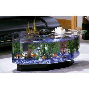 Freshwater Aquariums Fish Tank Aquariums On Hayneedle Freshwater
