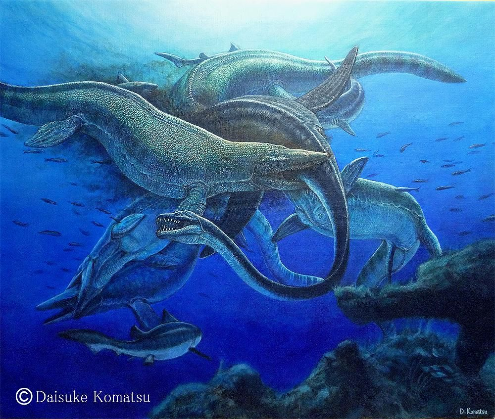 Elasmosaurus Vs Mosasaurus