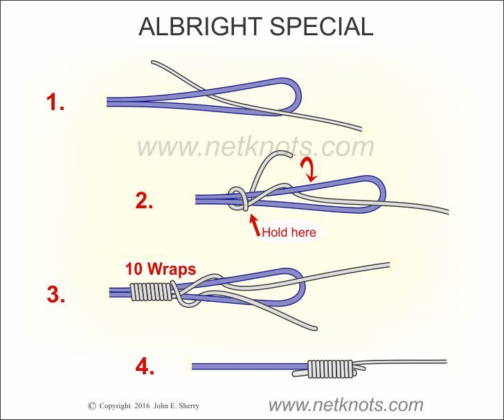 Albright knot the albright special knot fishing knots for Fly fishing knots