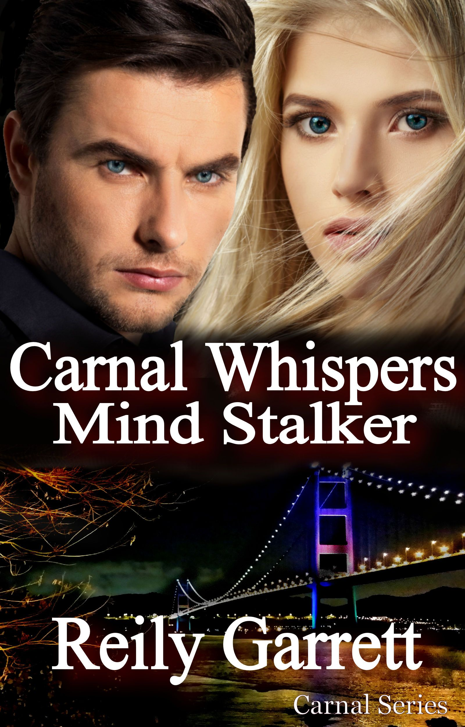 http://booksandspoons.weebly.com/books/books-spoons-virtual-tour-event-carnal-whispers-mind-stalker-by-reily-garrett