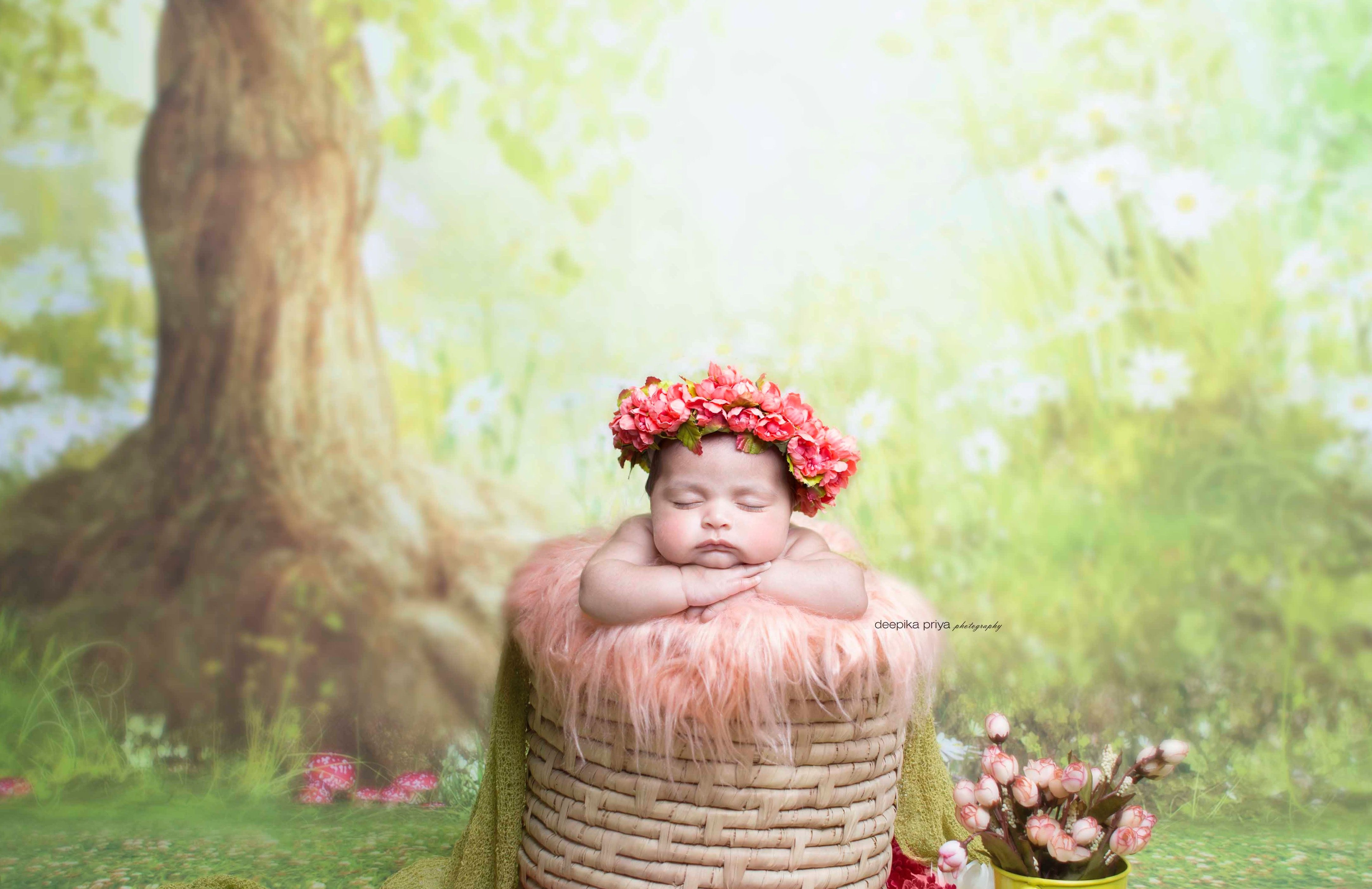 Safari themed baby photoshoot newborn photography