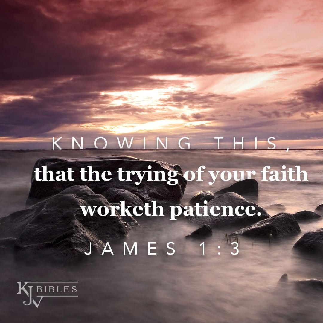 Pin on KJV Bible Verses