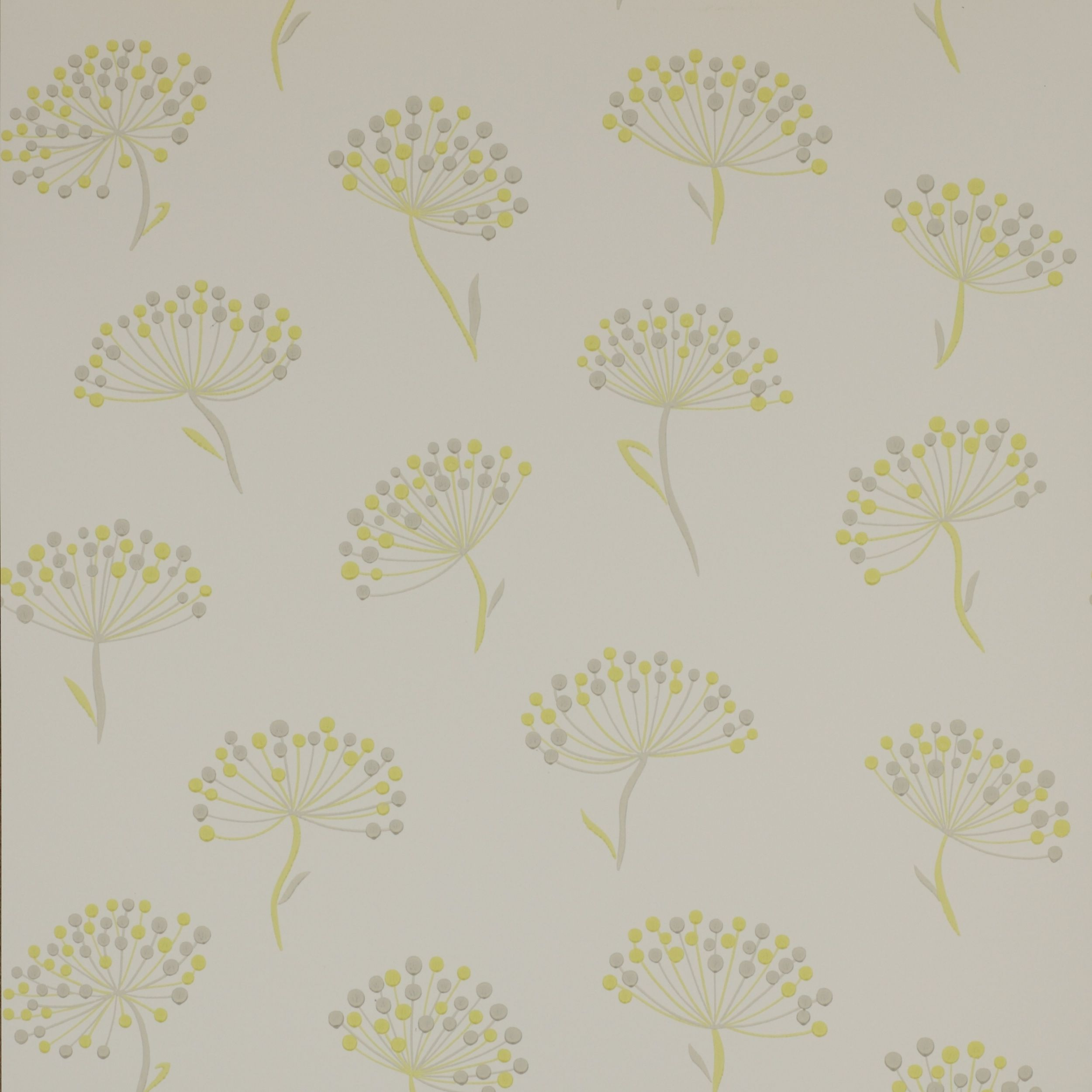 Alba Wallpaper - Colefax and Fowler