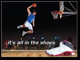 Jordan Shoes Fallacies