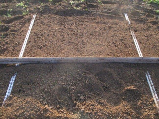 comment niveler la terre avant de semer le gazon.   jardin