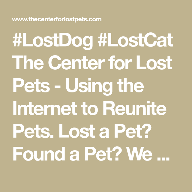 LostDog LostCat The Center for Lost Pets Using the