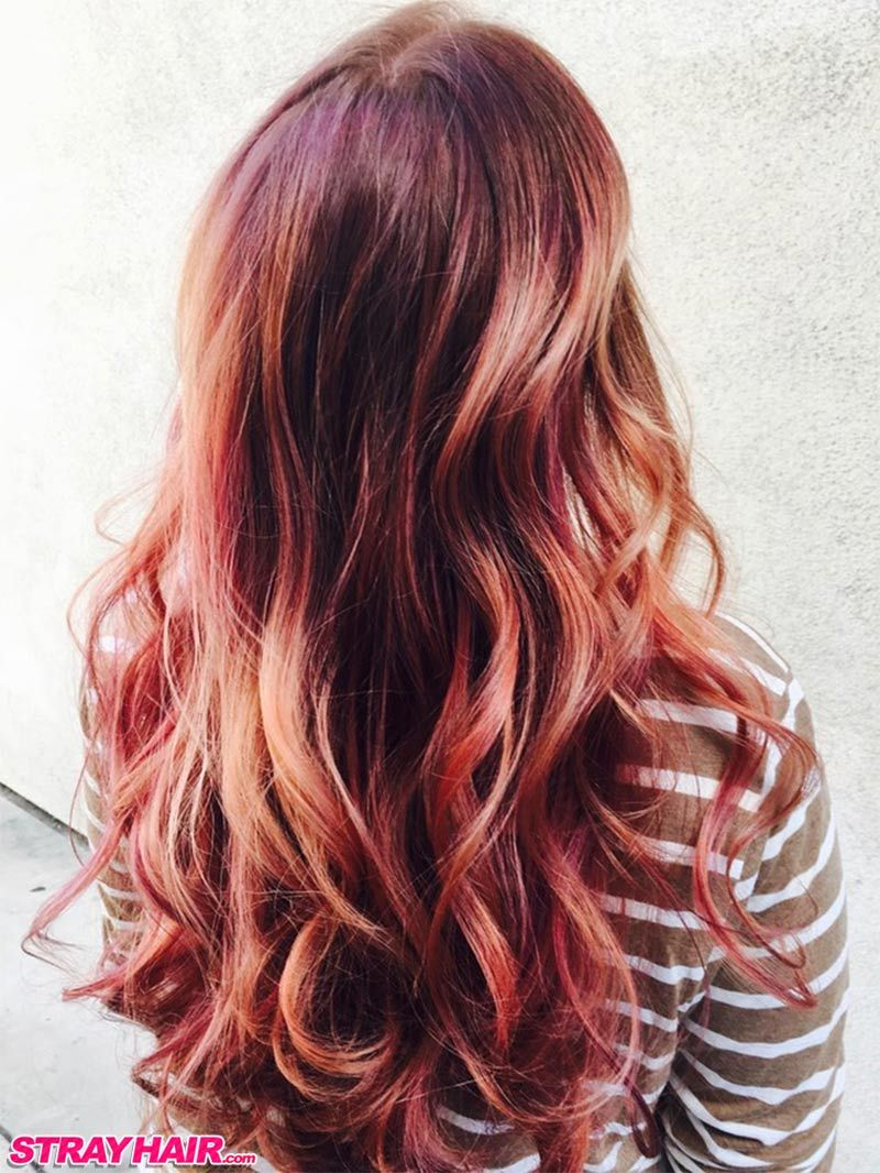 Copper Rose Gold Highlights Hair Color Pinterest Hair Rose