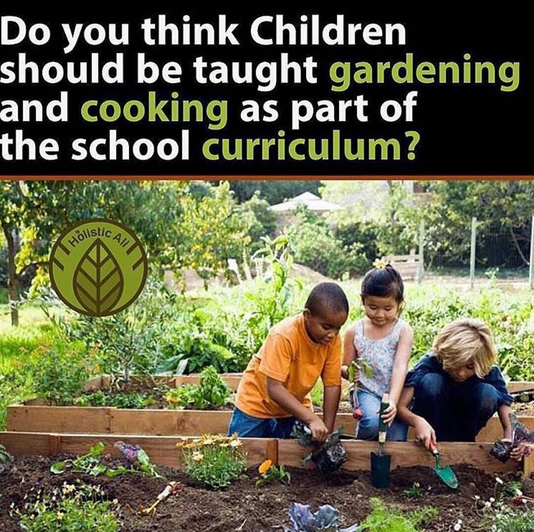 c9580df2f2176280519043805a60b049 - Why Gardening Should Be Taught In Schools