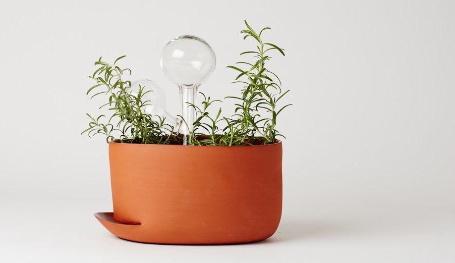 Anderssen Voll Indoor Gardening Tools Azure Magazine