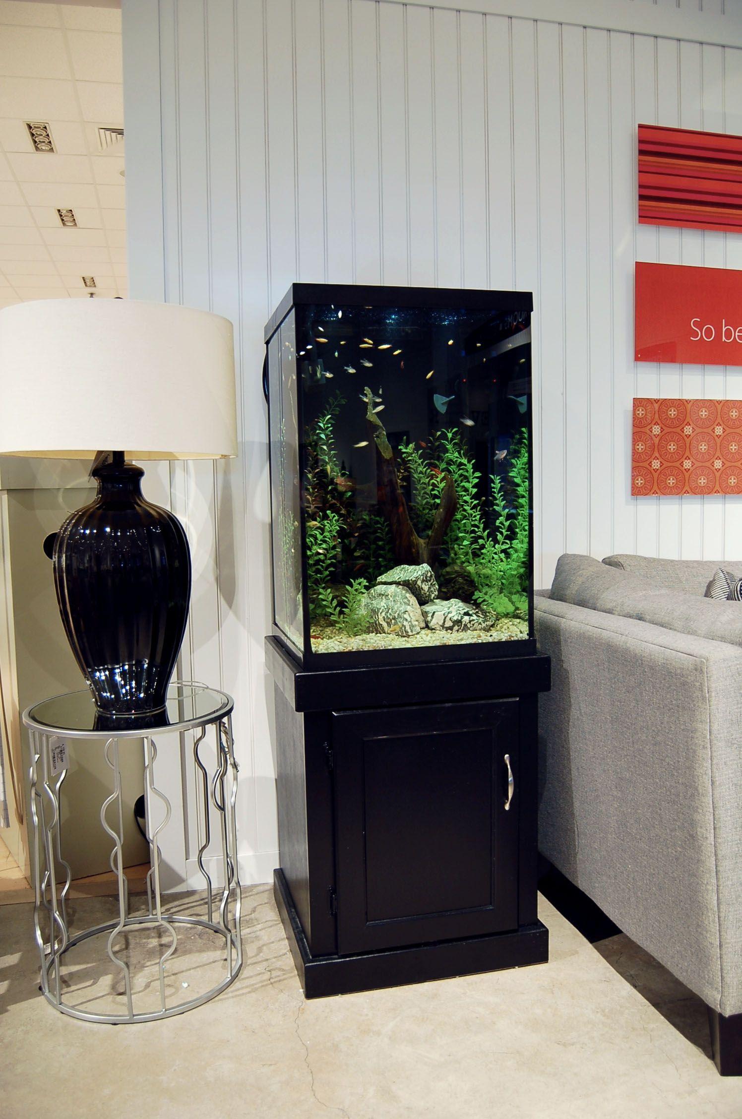 The Newport Model In Black Oak 47 Gallon Freshwater Tropical Aquarium Fish Tank Design Tank Design Fish Tank