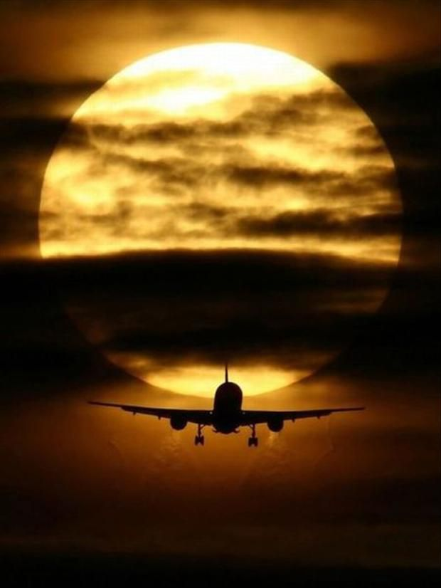 Go To The Airport And Get On The Next Flight Out Photo Fear Of Flying Pictures