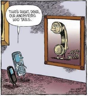 Image result for credit to ancestors funny