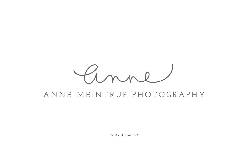 Handlettered Name Logo Design Anne Meintrup Logo Design Name Logo Lettering Design