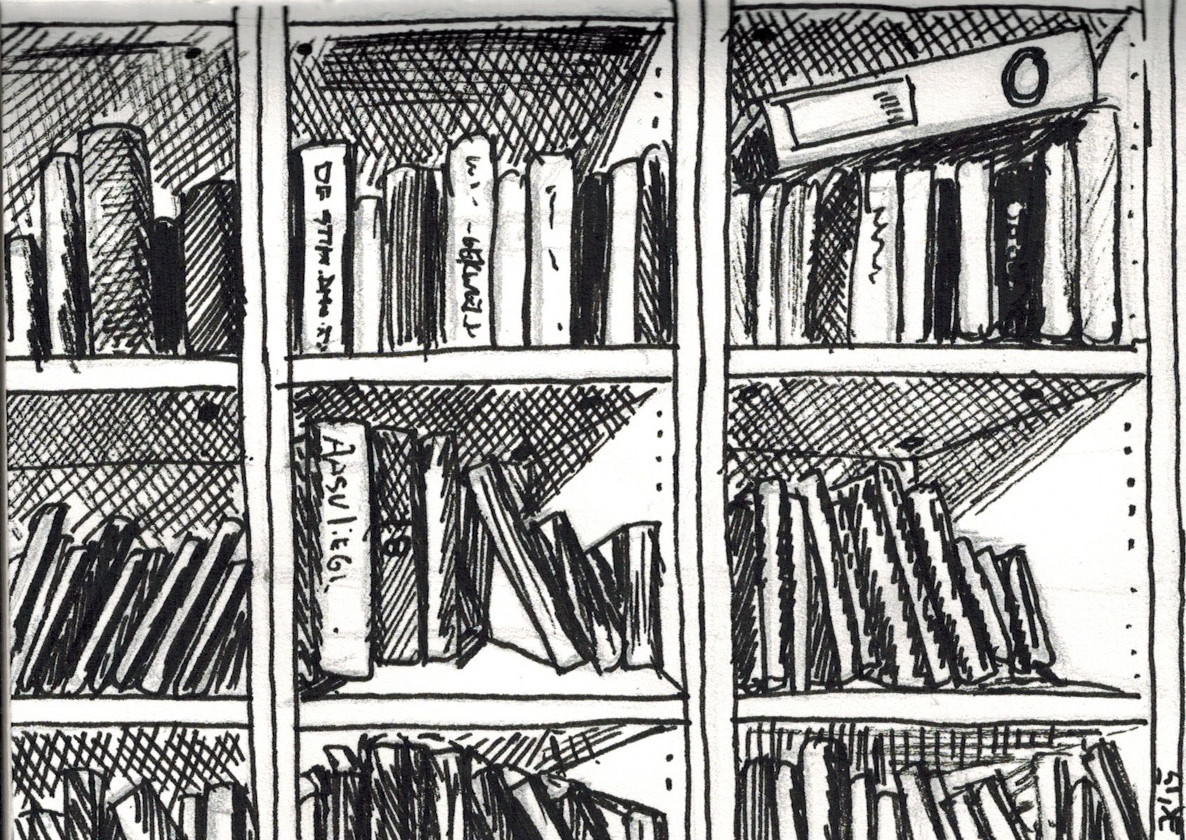 Edwardsdailydrawing 287 Bookshelf Sketch