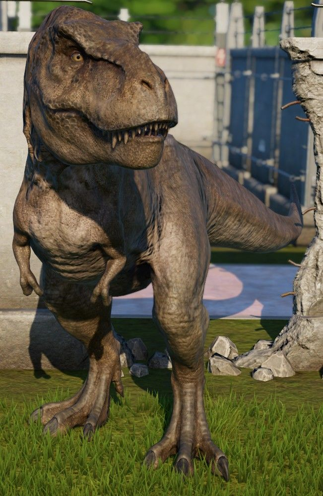Pin on Tyrannosaurus rex