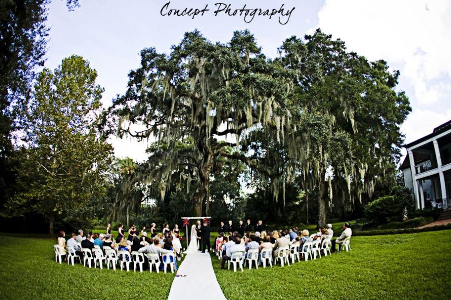 Wedding Leu Gardens Orlando Fl Concept Photography