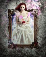 Rose by tiffanydark