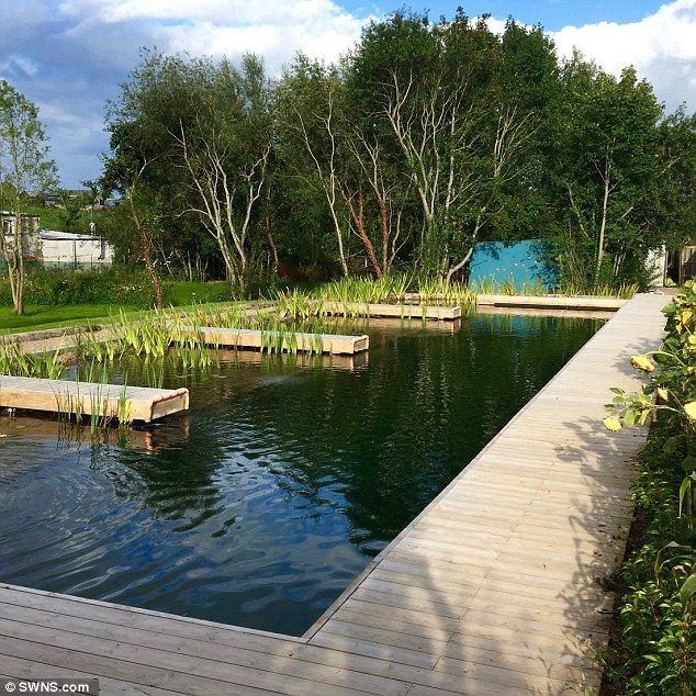 Pin On Natural Pools
