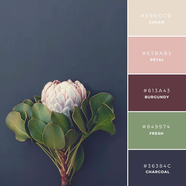 20 Unique And Memorable Brand Color Palettes To Inspire You Farveskemaer Farveinspiration Farvepaletter