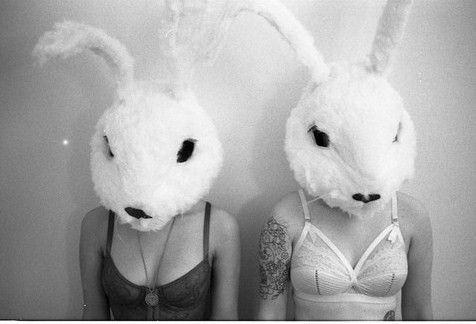 Rabbitess**