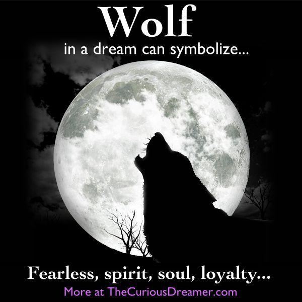 Afbeeldingsresultaat Voor Wolf Symbolic Meaning Inspirational