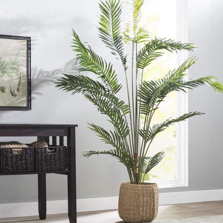 Beachcrest Home Paradise Palm Tree Floor Plant In P*T 400 x 300