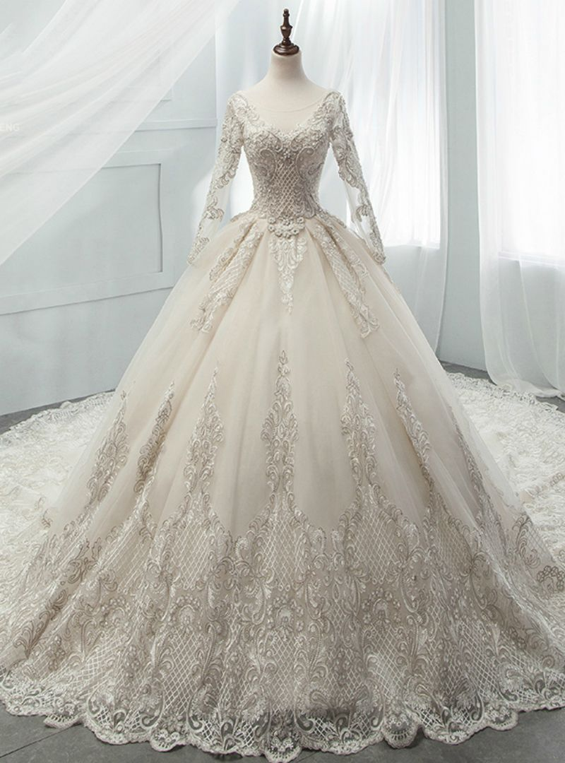 34d68d452c0b4 Light Champagne Tulle Appliques Long Sleeve Backless Beading Wedding Dress