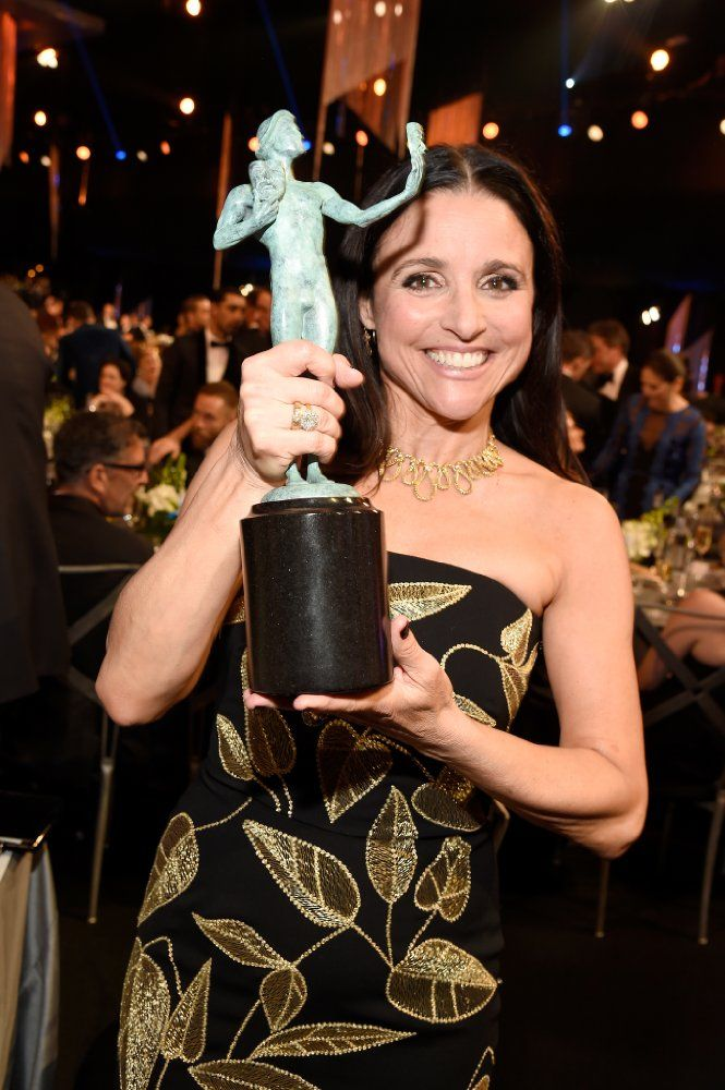 2017 Screen Actors Guild Awards   Julia louis dreyfus ...